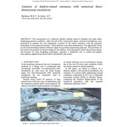 Analysis of shallow-tunnel entrances with numerical three-dimensional simulations